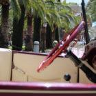 hacienda-ballemari-huelva-bodas-arcos3catering-04